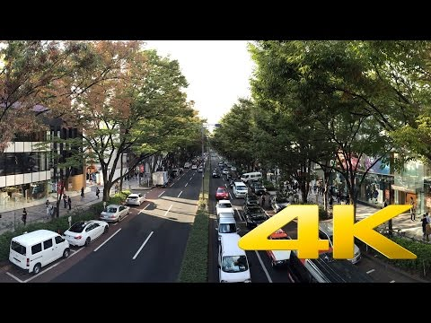 Omotesando Avenue - Tokyo - 表参道 – 4K Ultra HD