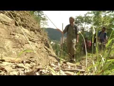 Geology And Earth Systems Science