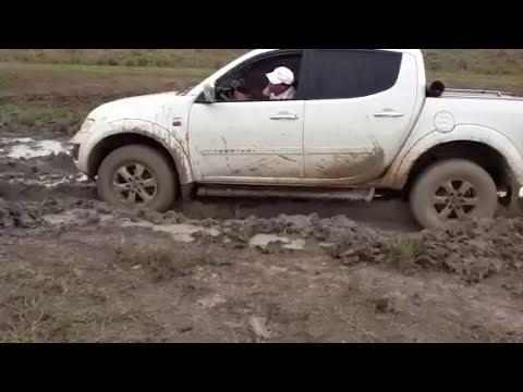 Triton na lama