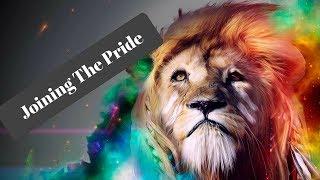 Joining The Pride: Coach Matt The Lions Den Elite Training