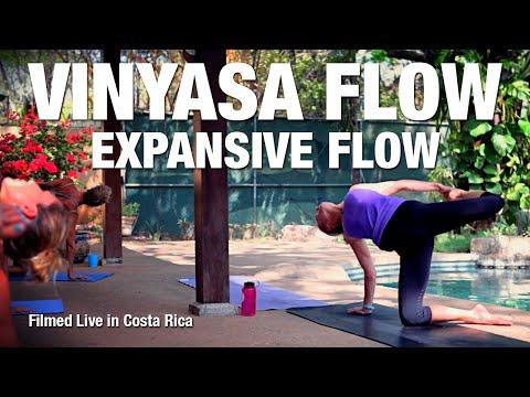 Five Parks Yoga - Expansive Flow - 60 Minute (Live)