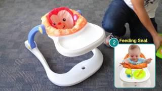 產品示範影片: 費雪CBV66 四合一小猴子歡樂園
