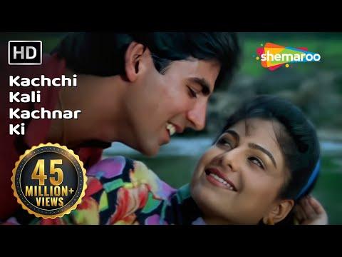 Kachchi Kali Kachnar Ki - Akshay Kumar - Ayesha Jhulka - Waqt...