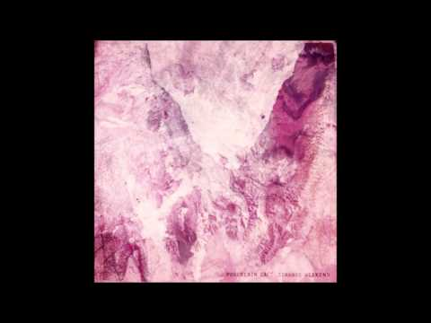 Porcelain Raft - Shapeless & Gone