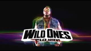 Watch Flo-rida Louder video
