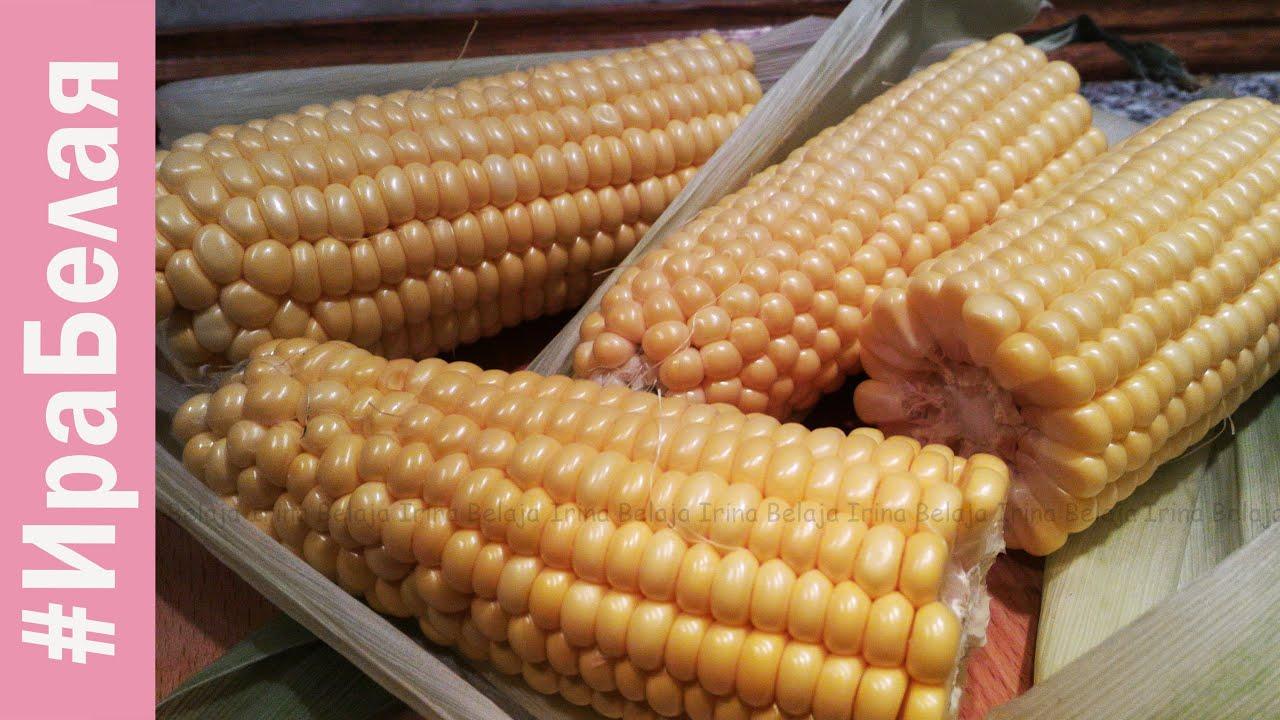 Как хранить кукурузу в домашних условиях. Условия для длительного
