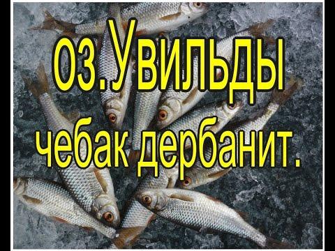 челябинск рыбная ловля  в узункуле