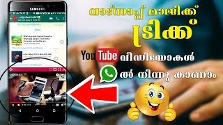 WhatsApp Tricks You Did Not Know 2017/2018  Whatsapp useful video/Computer and mobile tips