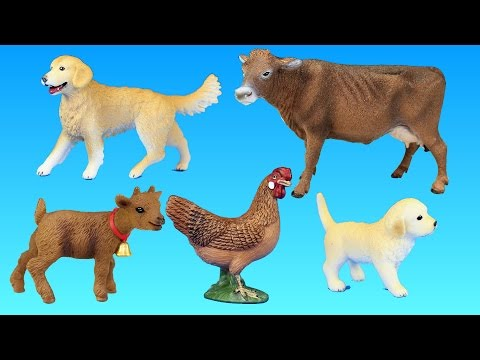 Toy Farm Animals Schleich Advent Calendar Surprise Playset - Animal Toys Video