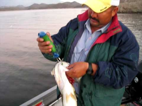 Stan Crain - Bass fishing at Lake Baccarac, Mexico