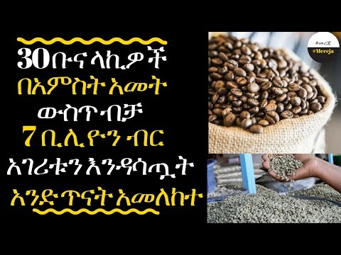 ETHIOPIA 30 Ethiopian coffee exporters losts the country about 7 billion birr