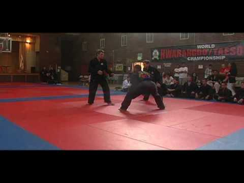 Submission Fighting (Gotoogi) Tournament - Hwa Rang Do Black Sashes 2009 Image 1