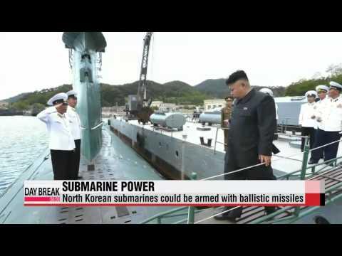 North Korea developing ballistic missile submarine - report   美군사전문매체: 北 탄도미사일 발