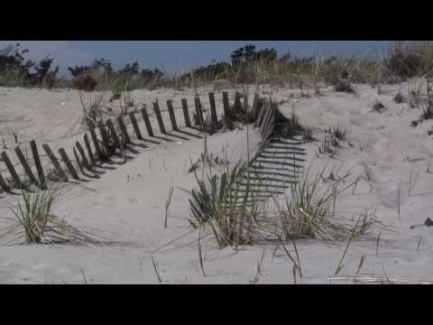 Fire Island, New York (HD)