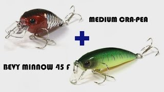 Medium Cra Pea + Bevy Minnow 45f = голавль