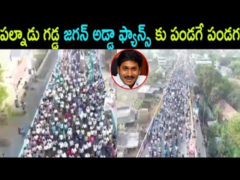 జగన్ అడ్డా ఫ్యాన్స్ కు పండగే YS JAGAN Pallnadu Padayatra Fans Craze Hungama YSRCP | Cinema Politics