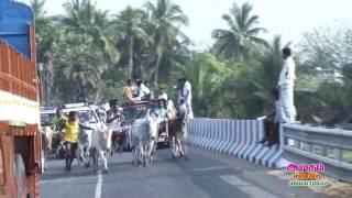 4 mattuvandi panthayam partu4