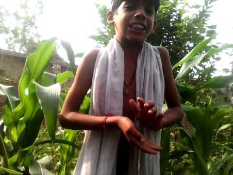 Pawan Singh Bhojpuri Bhakti Geet video