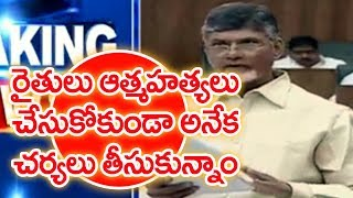 AP CM Chandrababu Naidu Speech on Agriculture Development | AP Assembly