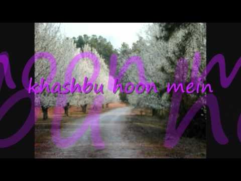 khushbu hoon mein phool nai hoon