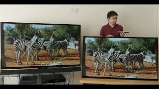 Panasonic FZ952 vs Sony AF9 (A9F) 2018 OLED TV Comparison