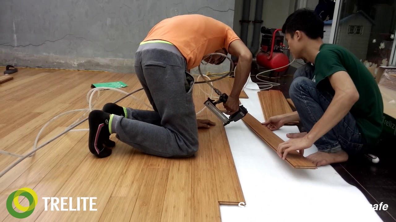 Trelife thi công nhà Anh Minh Ecopark