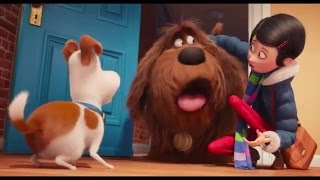 The Secret Life of Pets - Trailer 3 (Universal Pictures)