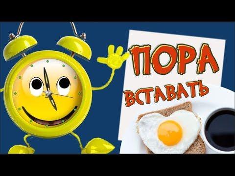 Прикольный будильник  желает  доброго УТРА .Весёлой  улыбкой встречай новый день.#Мирпоздравлений