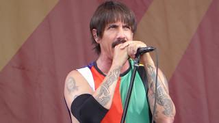download lagu Red Hot Chili Peppers - Under The Bridge Jazz gratis