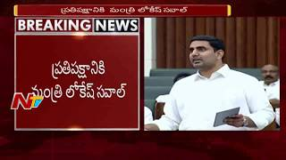 IT Minister Nara Lokesh Powerful Speech in AP Assembly || About IT companies || ntv
