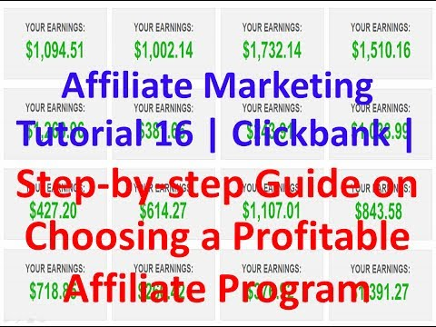 Affiliate Marketing Tutorial 16 | Step by step Guide on Choosing a Profitable Affiliate Program