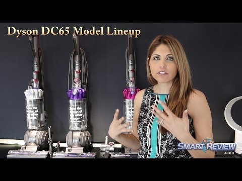 Dyson 2014   Dyson DC65 Upright Vacuum Lineup and Comparison   Multi-Floor. Animal. Animal Complete