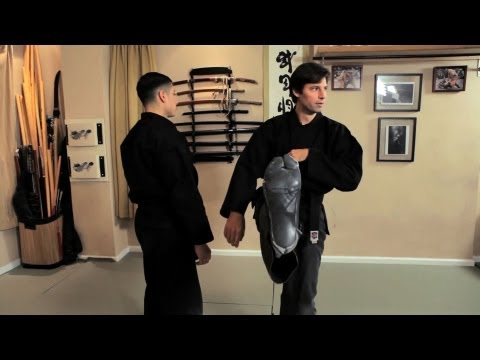 Zenpo Geri (Forward Kick) | Ninjutsu Techniques Image 1