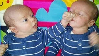 Try Not To Laugh - Twins Baby Arguing Together || Best Babies Compilation