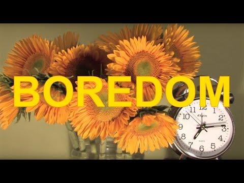 Boredom - Tyler, The Creator (Lyrics/Music Video)