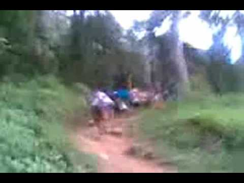 Sabarimala Forest Traditional Path video