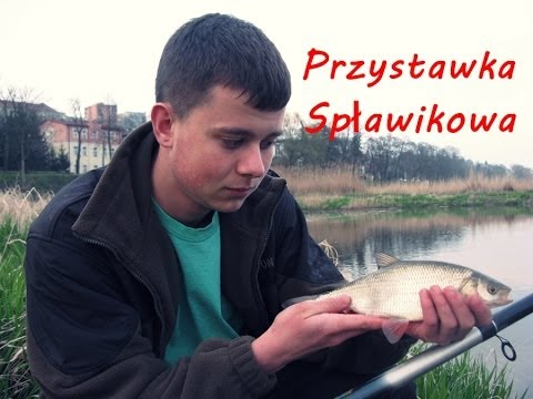 Przystawka spławikowa-łowienie na groch [Odra]