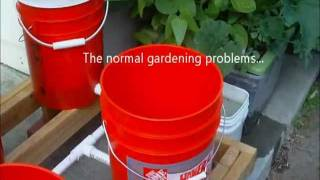 Bucket Garden Simple Automatic Watering
