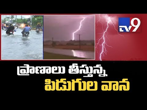 Unseasonal Rain, Lightning Kills 16 In AP - TV9