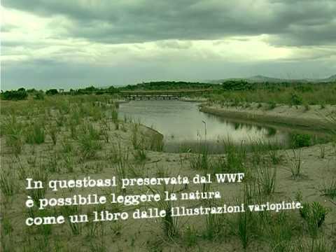 """Promo-redazionale Apt """"Parchi Naturali in Basilicata"""""""