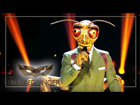Download Lagu  Shallow - Lady Gaga & Bradley Cooper | Grashüpfer Performance | The Masked Singer | ProSieben Mp3 Free