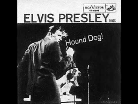 What Does A Hound Dog Sound Like