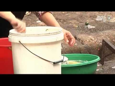 VTC14_Ngon và lành: Cảnh giác với ngộ độc thực...