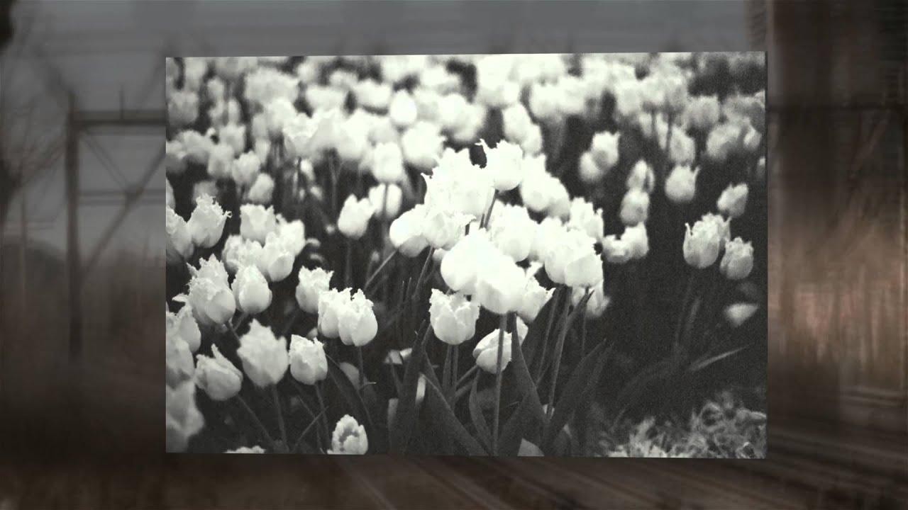 Minolta 7000 Pictures Minolta 7000 Sample Pictures