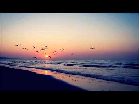 Phase - Albatross (ft. Viv May) video