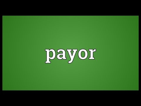 Header of payor