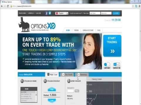 Binary options no deposit needed 100 free bonus