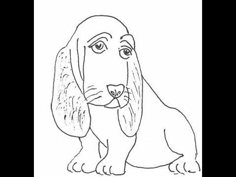 Easy Basset Hound Drawing Basset Hound Dog How to Draw