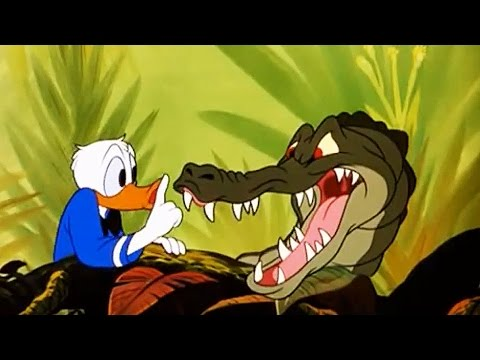 Disney's Old Time Animal Classics - Crazy Toon Collection with Mickey, Donald, Pluto, Goofy!