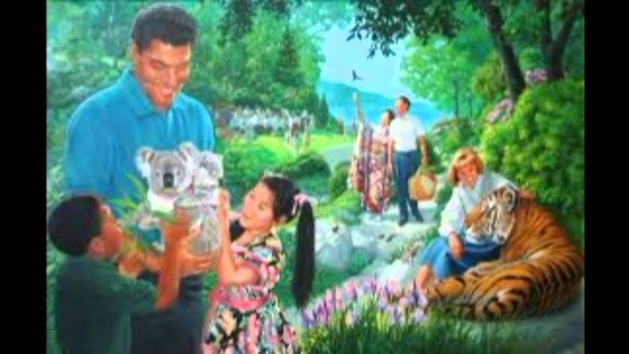Подарки свидетелям иеговы